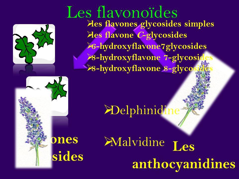 Les flavonoïdes Flavones glycosides Les anthocyanidines Delphinidine