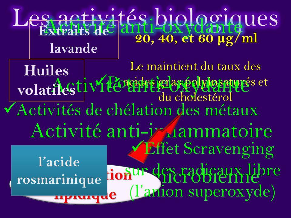 Peroxydation lipidique