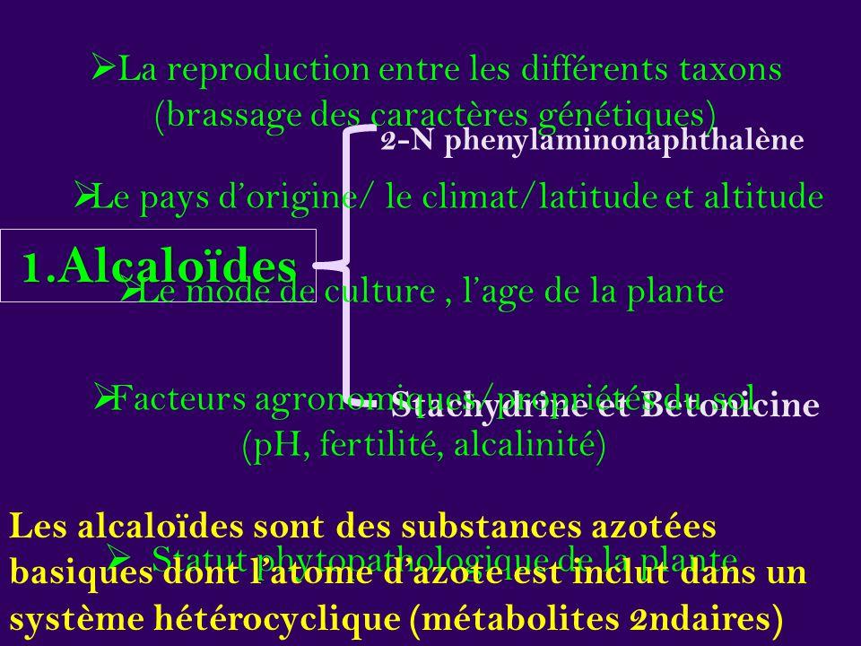 2-N phenylaminonaphthalène Stachydrine et Betonicine