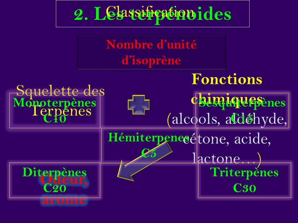 Nombre d'unité d'isoprène