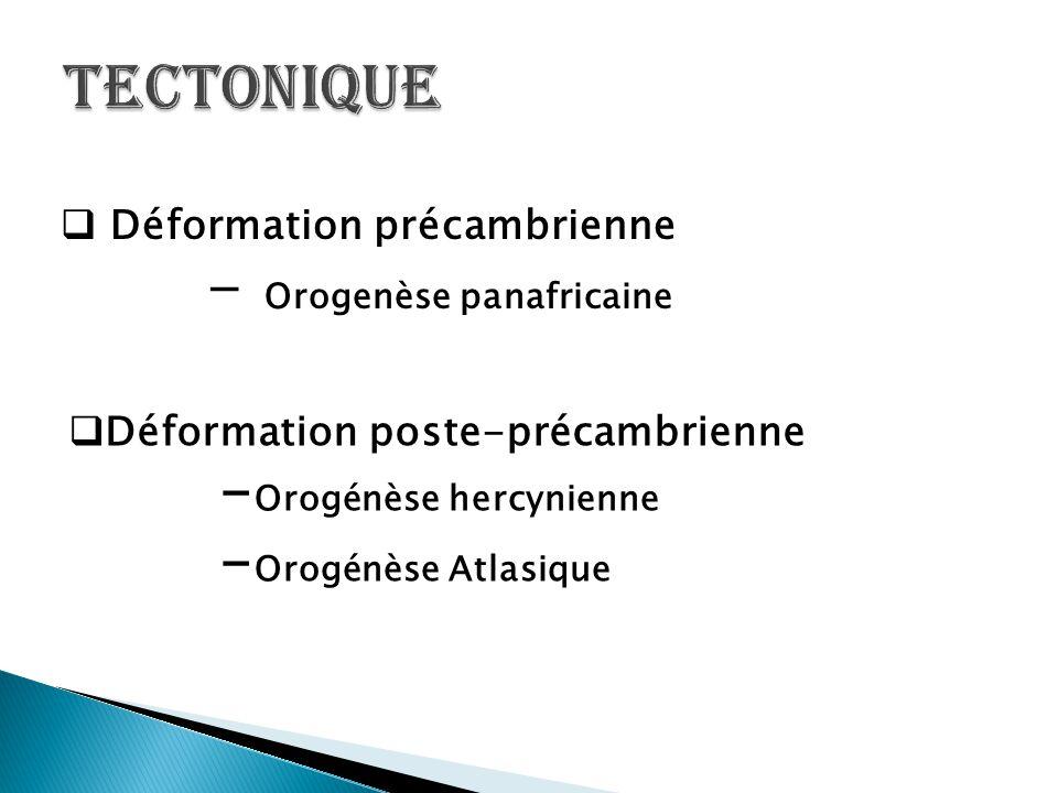 Tectonique -Orogénèse hercynienne -Orogénèse Atlasique
