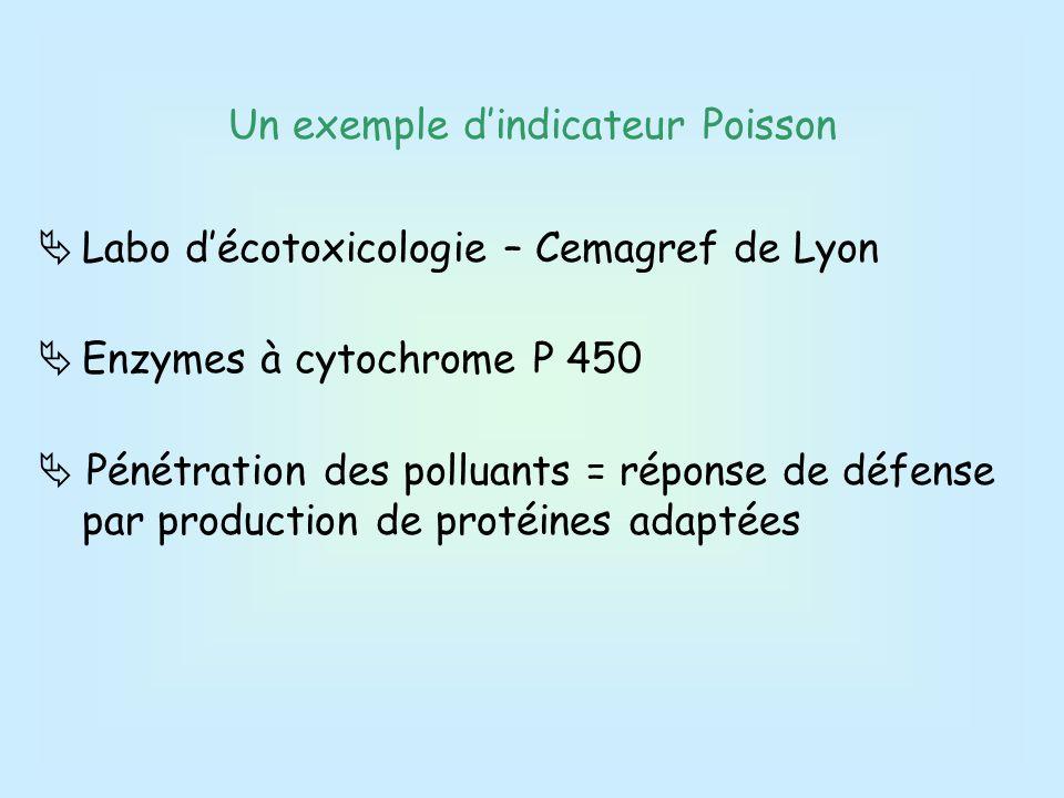 Un exemple d'indicateur Poisson