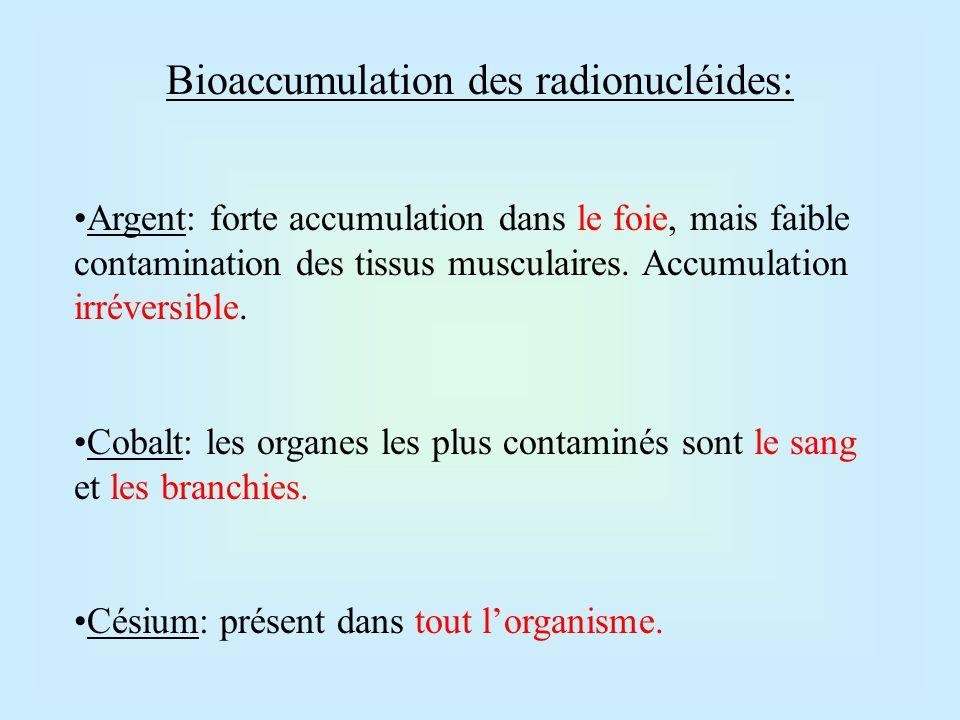 Bioaccumulation des radionucléides: