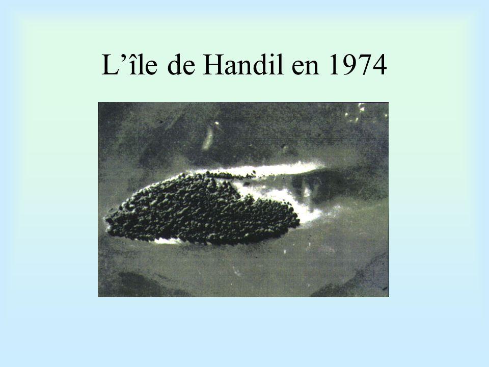 L'île de Handil en 1974