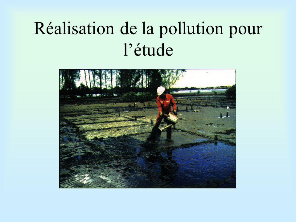 Réalisation de la pollution pour l'étude