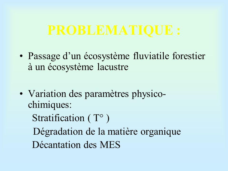 PROBLEMATIQUE : Passage d'un écosystème fluviatile forestier à un écosystème lacustre. Variation des paramètres physico-chimiques: