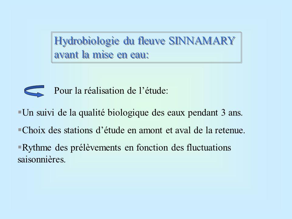 Hydrobiologie du fleuve SINNAMARY avant la mise en eau: