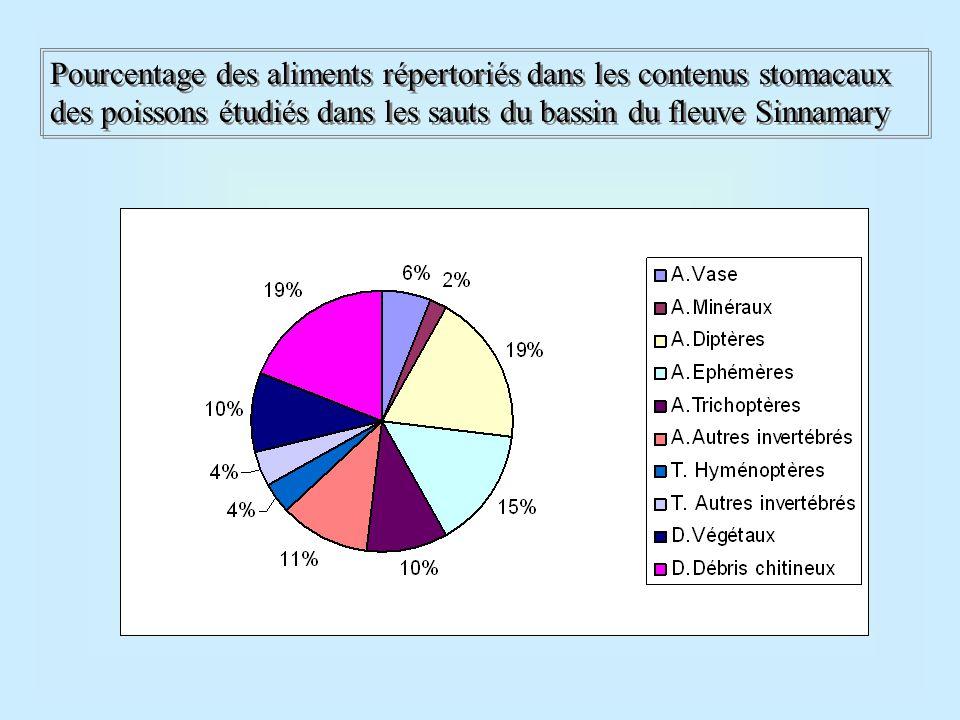 Pourcentage des aliments répertoriés dans les contenus stomacaux des poissons étudiés dans les sauts du bassin du fleuve Sinnamary