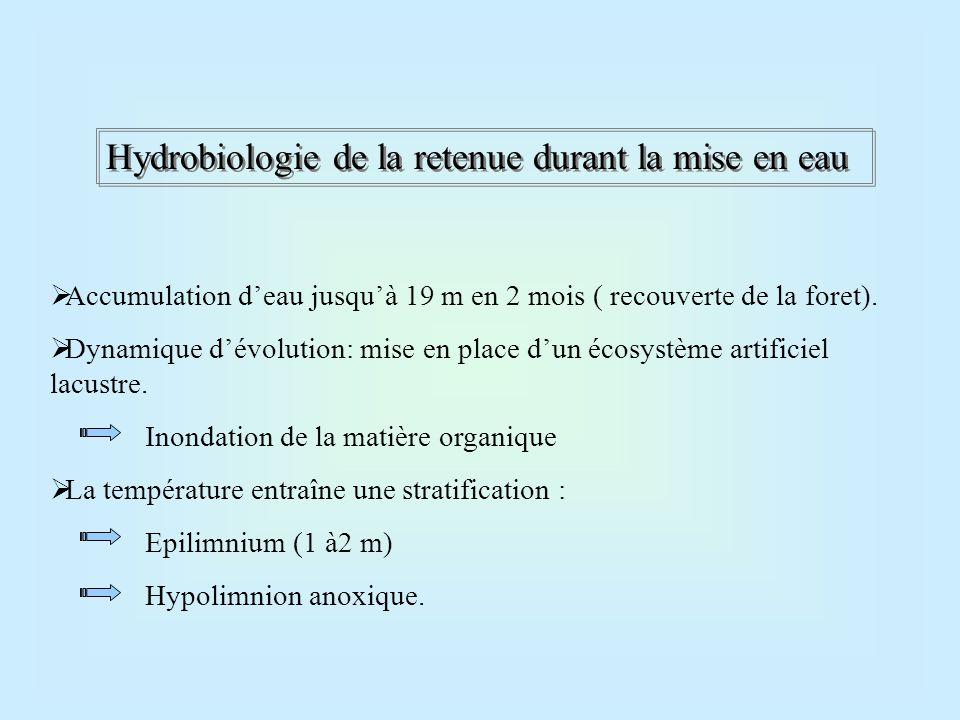 Hydrobiologie de la retenue durant la mise en eau