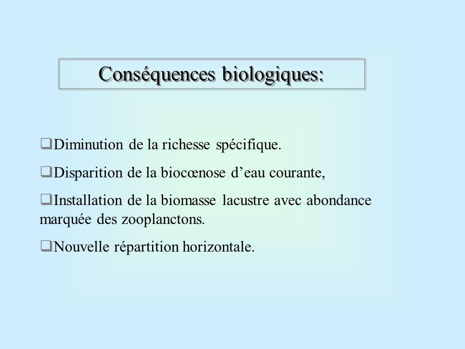 Conséquences biologiques: