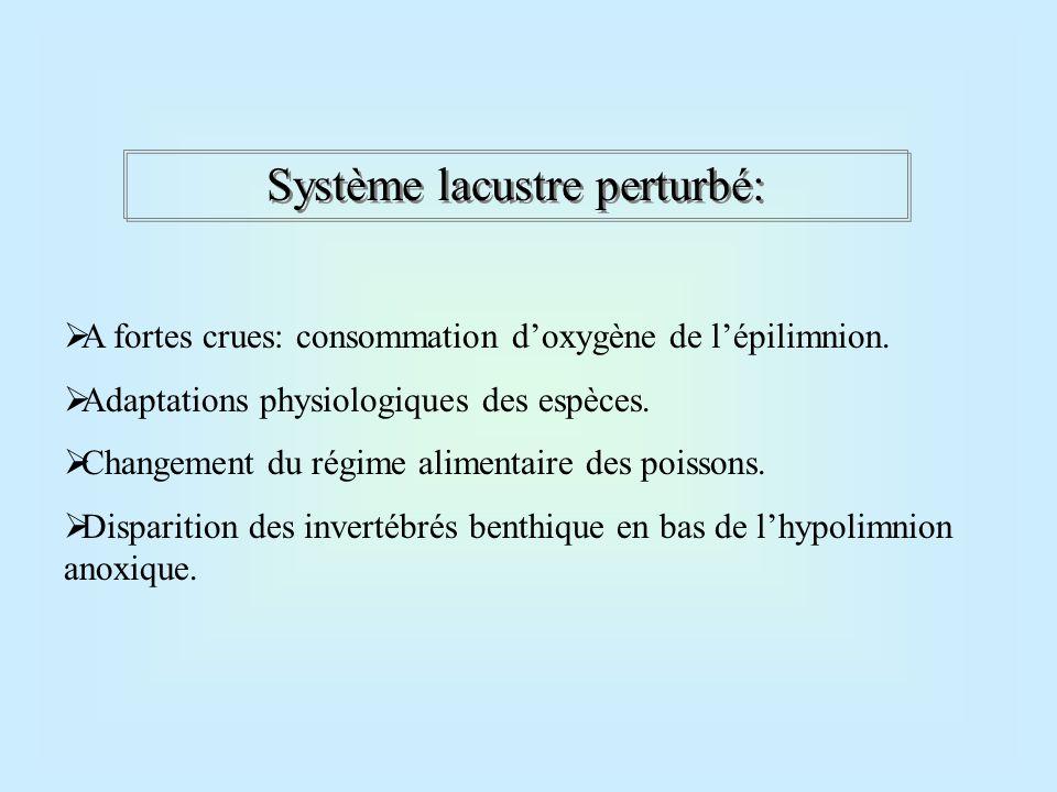 Système lacustre perturbé: