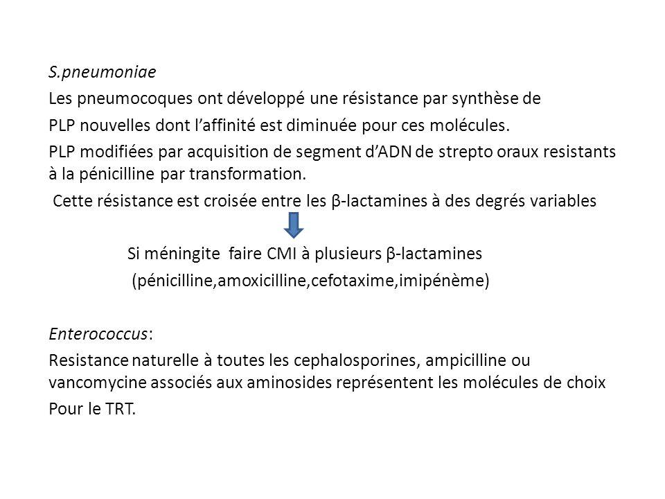 S.pneumoniae Les pneumocoques ont développé une résistance par synthèse de. PLP nouvelles dont l'affinité est diminuée pour ces molécules.
