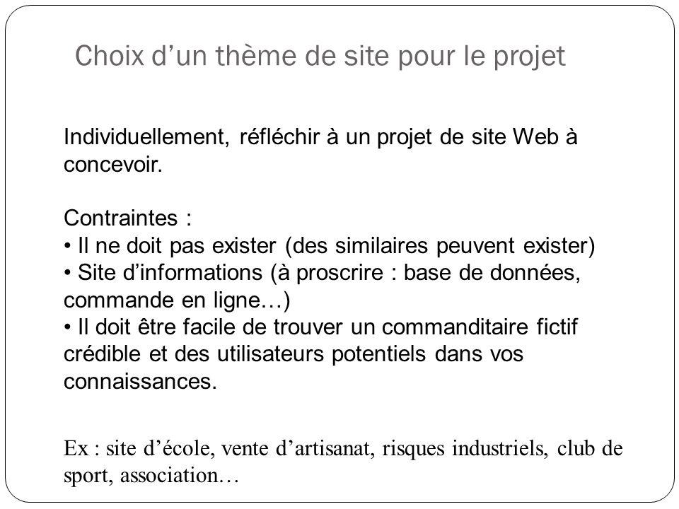 Choix d'un thème de site pour le projet