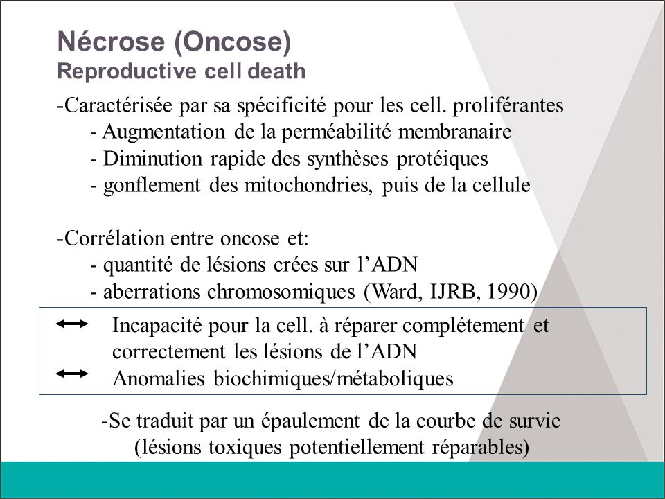 Nécrose (Oncose) Reproductive cell death