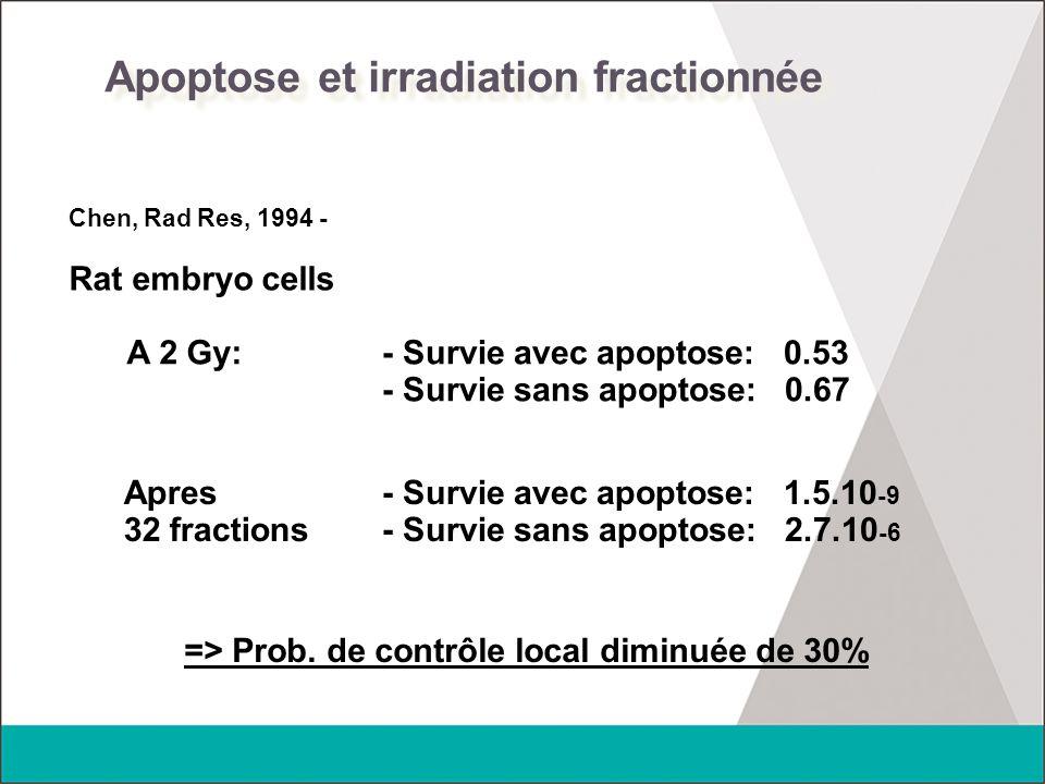Apoptose et irradiation fractionnée