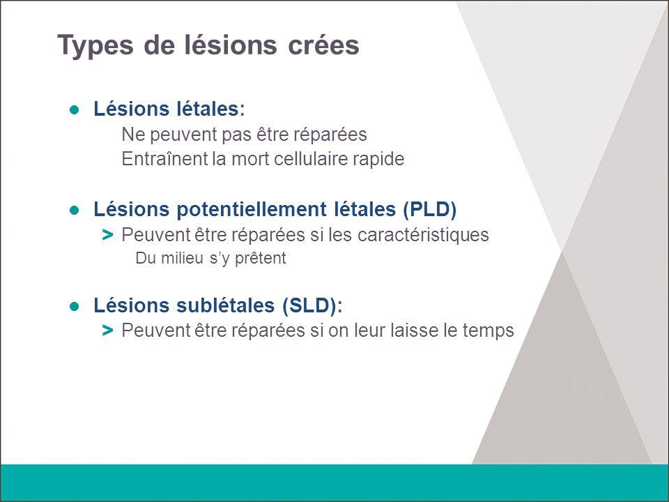 Types de lésions crées Lésions létales: