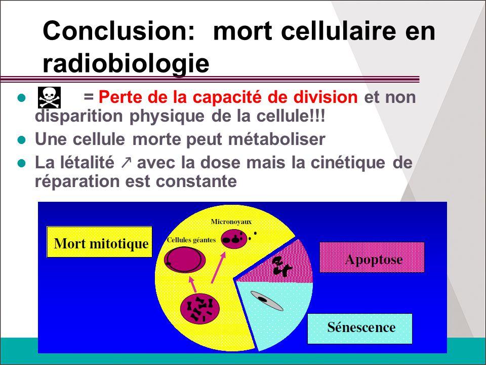 Conclusion: mort cellulaire en radiobiologie