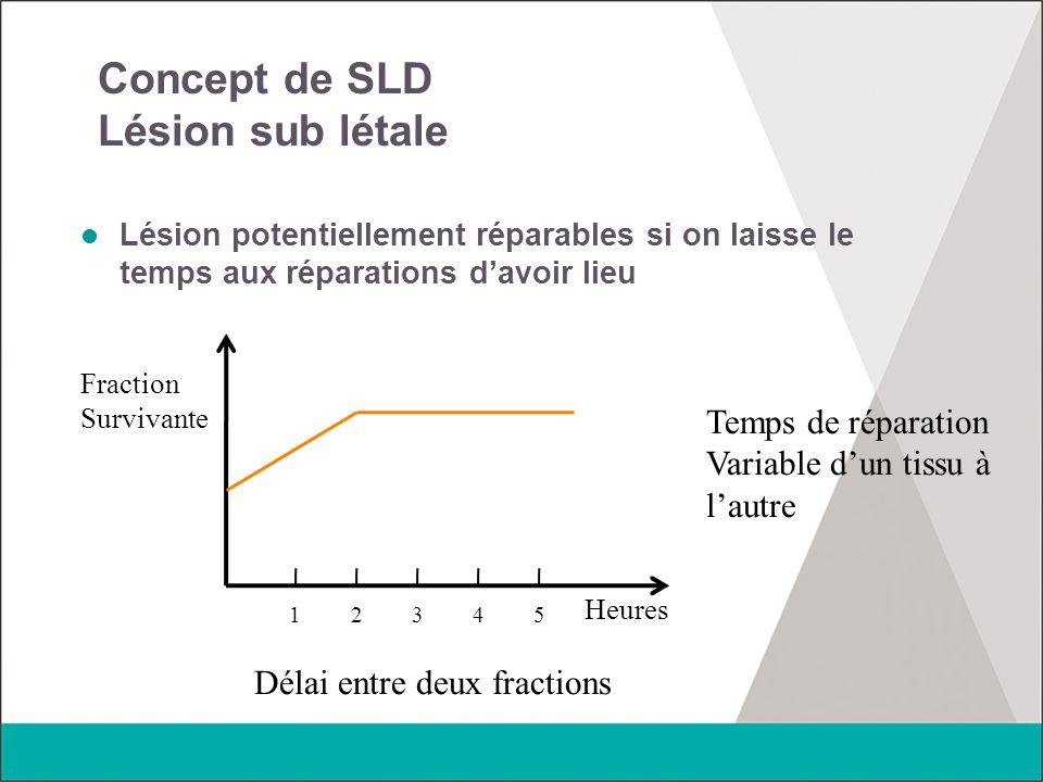 Concept de SLD Lésion sub létale