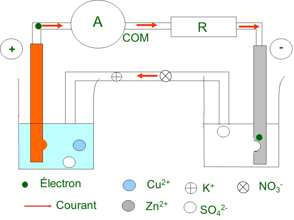A R COM + - Électron Cu2+ K+ NO3- Courant Zn2+ SO42-