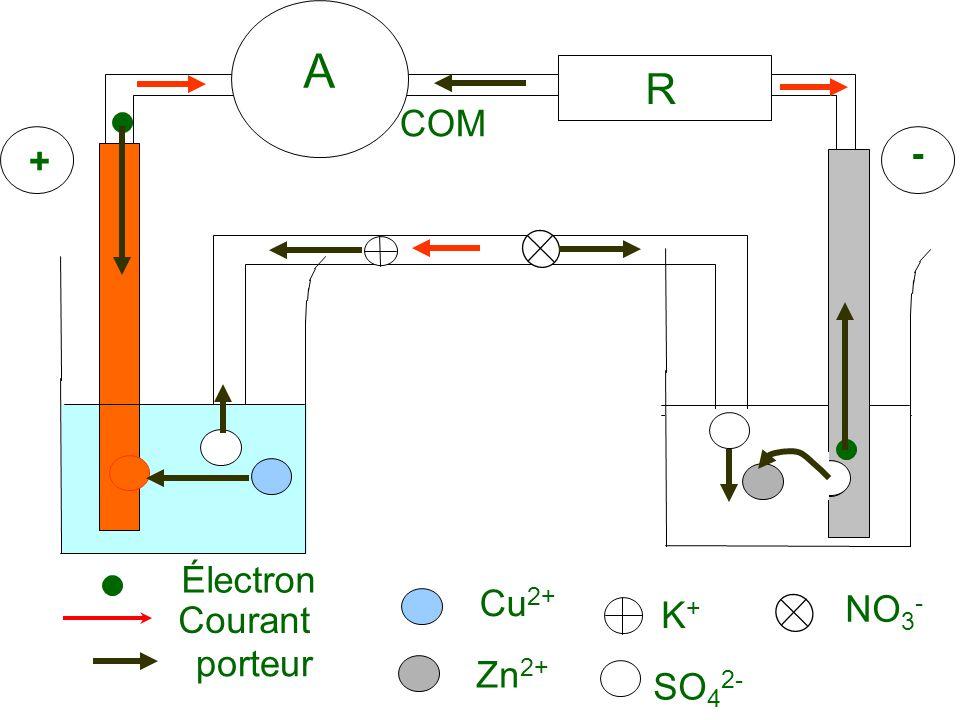 A R Électron Courant Zn2+ Cu2+ SO42- K+ NO3- COM + - porteur