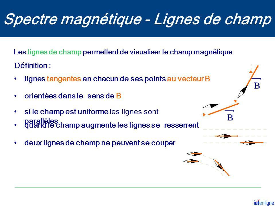 Spectre magnétique - Lignes de champ