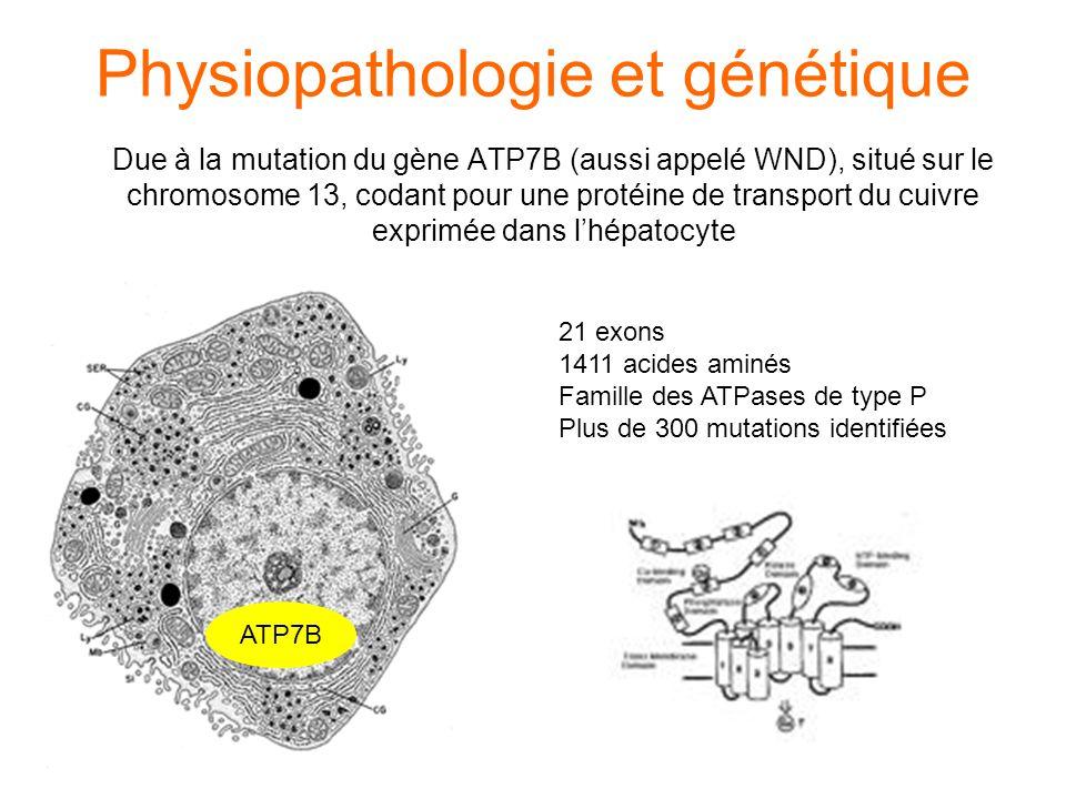 Physiopathologie et génétique