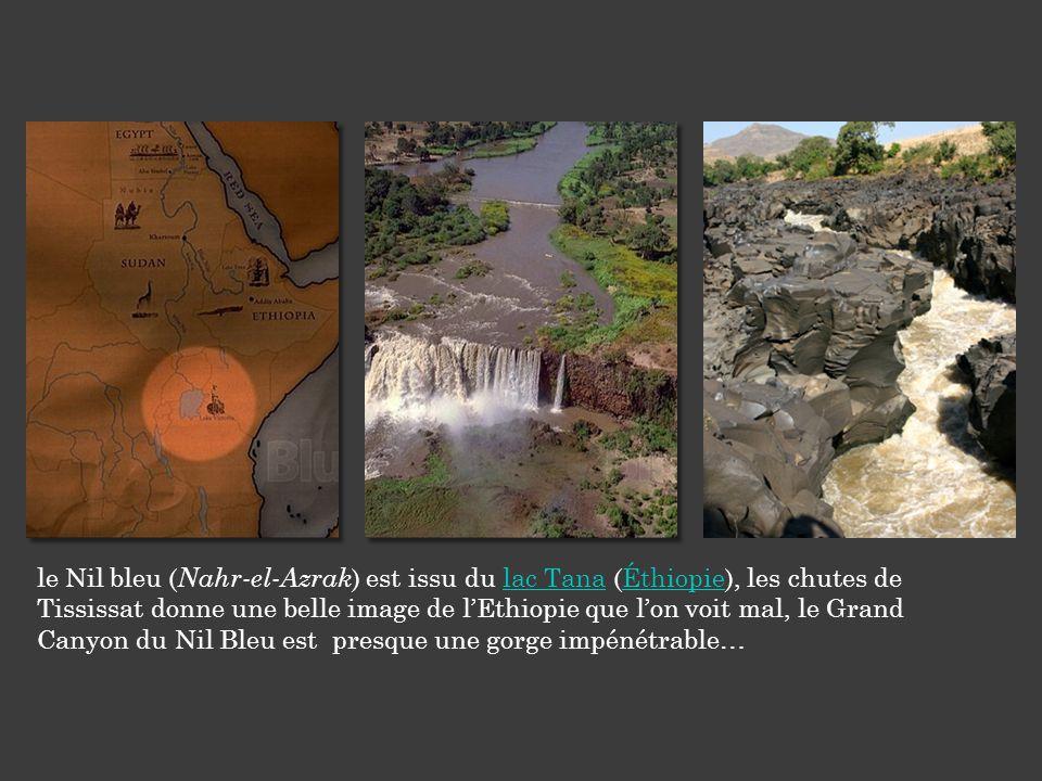 le Nil bleu (Nahr-el-Azrak) est issu du lac Tana (Éthiopie), les chutes de Tississat donne une belle image de l'Ethiopie que l'on voit mal, le Grand Canyon du Nil Bleu est presque une gorge impénétrable…