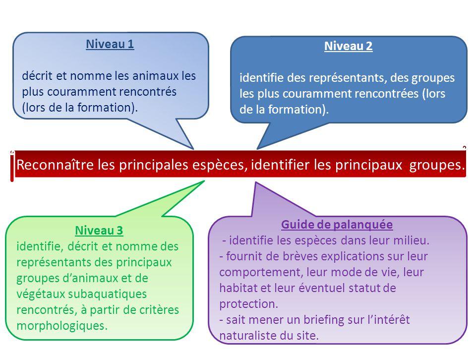 Niveau 1 décrit et nomme les animaux les plus couramment rencontrés (lors de la formation). Niveau 2.