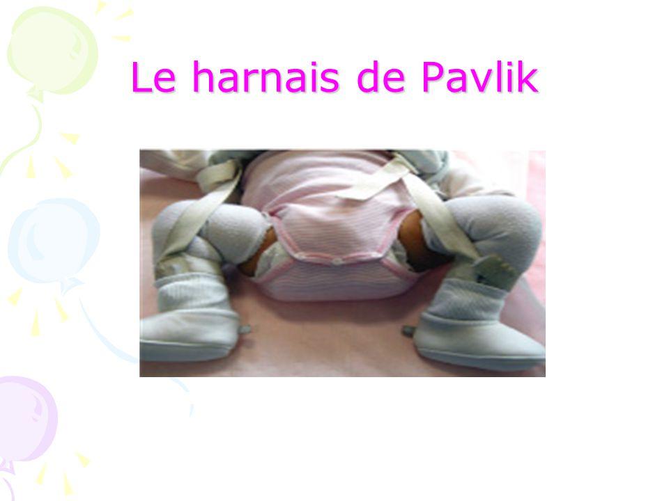 Le harnais de Pavlik