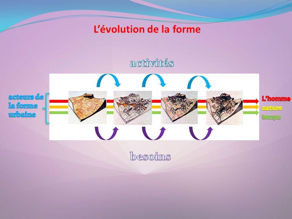 L'évolution de la forme