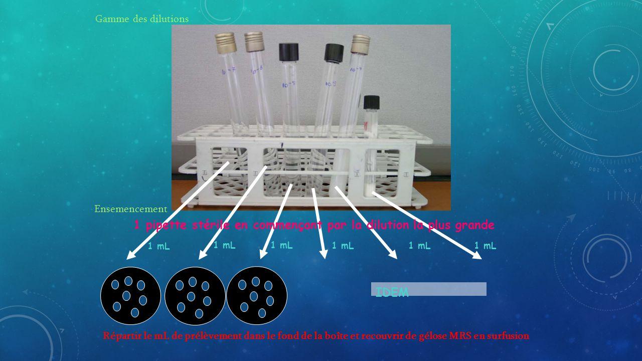 1 pipette stérile en commençant par la dilution la plus grande