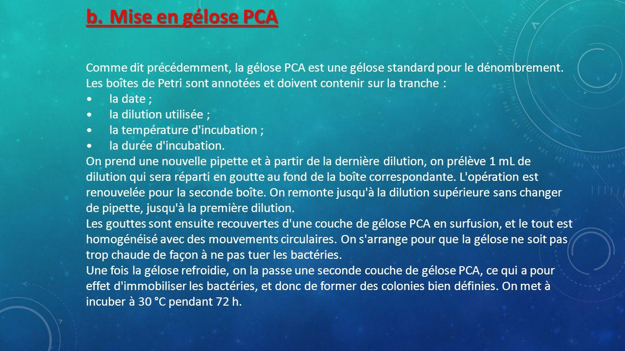 b. Mise en gélose PCA