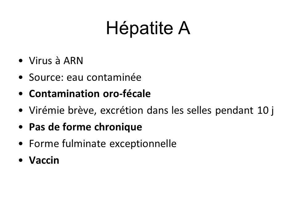 Hépatite A Virus à ARN Source: eau contaminée Contamination oro-fécale