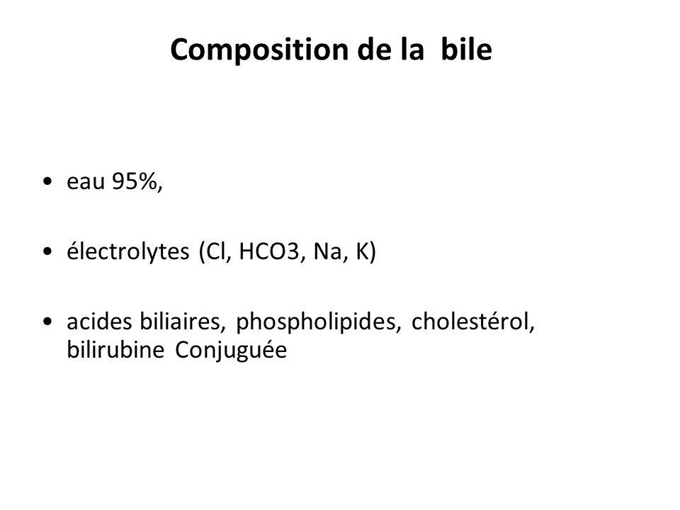 Composition de la bile eau 95%, électrolytes (Cl, HCO3, Na, K)