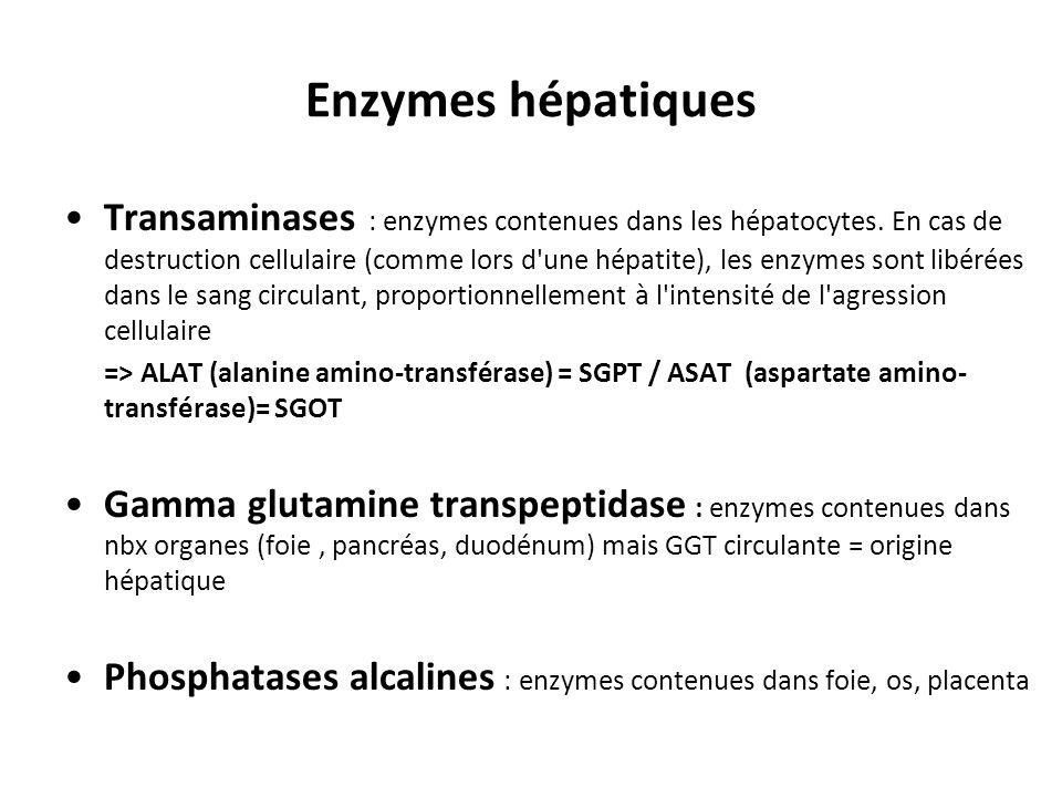 Enzymes hépatiques