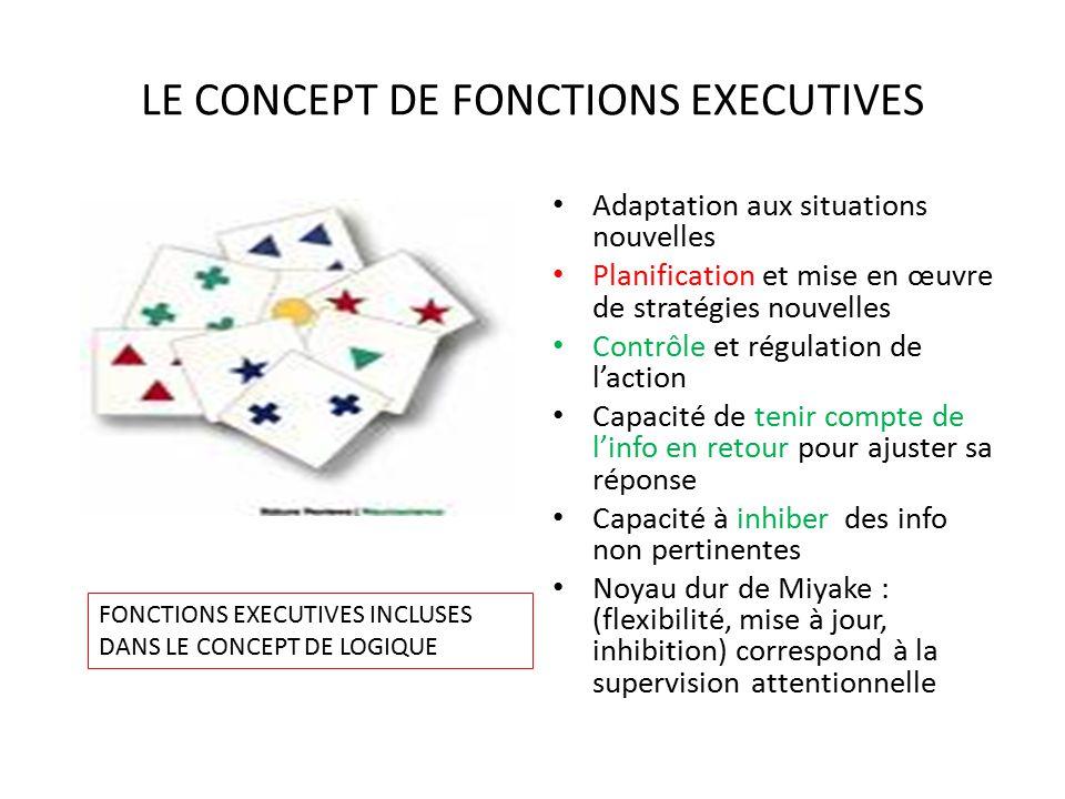Neuropsychologie du cerebrolese grave ppt t l charger for Les fonctions logiques de base