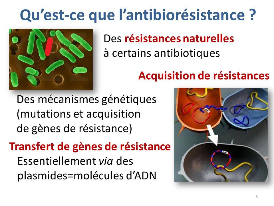 Limiter l antibior sistance ppt t l charger - Qu est ce qu une chambre d hote ...