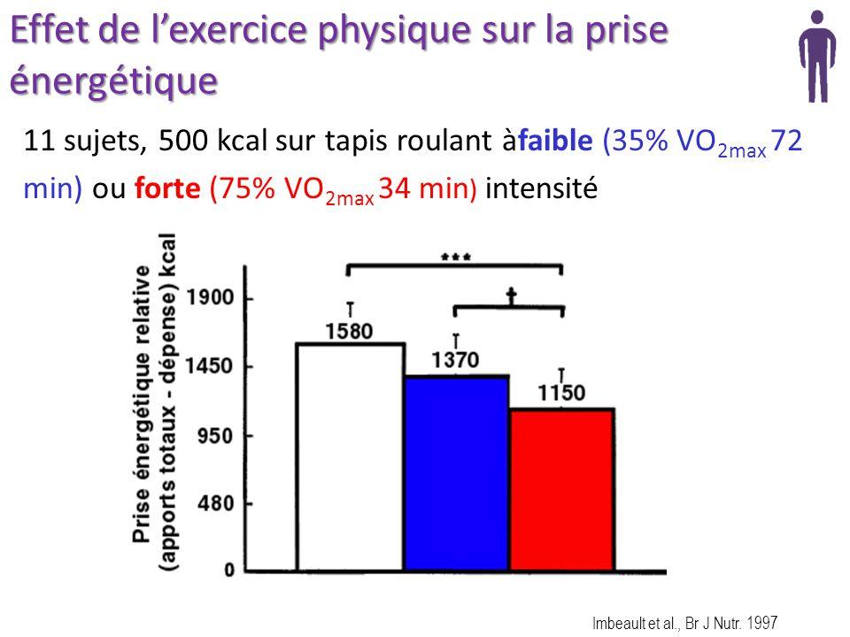 Dr didier chapelot ma tre de conf rences de l universit paris ppt t l charger - Test vo2max sur tapis roulant ...