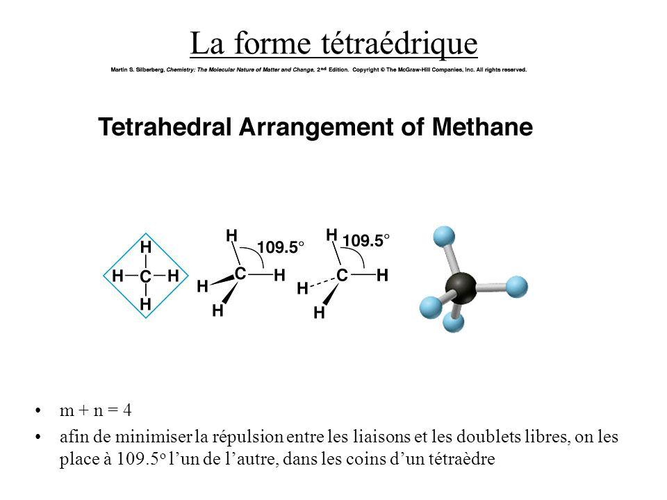 La forme tétraédrique m + n = 4