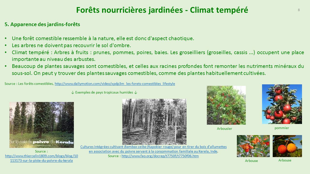 Bien-aimé Forêts nourricières jardinées Document actuellement en  IZ13