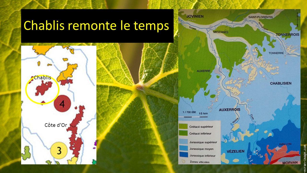 La fabrication du vin principes biologiques et techniques terroir et g ologie les ar mes - Bassin baignade biologique bordeaux ...