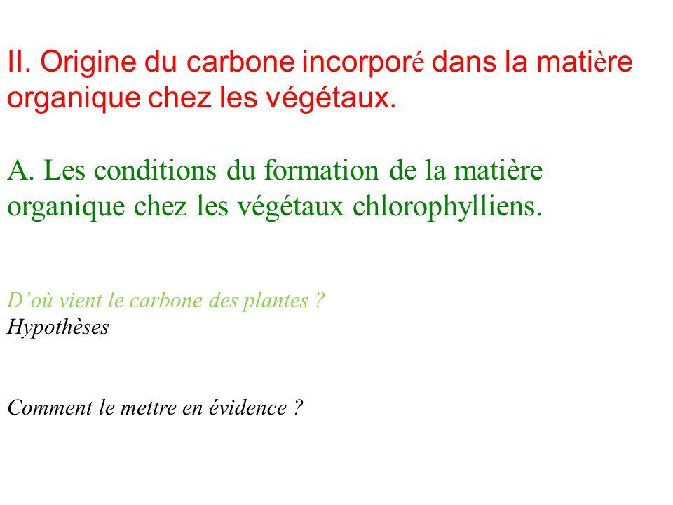 II. Origine du carbone incorporé dans la matière organique chez les végétaux.