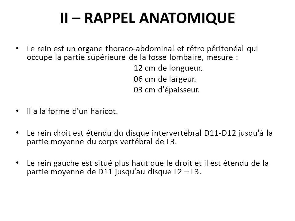 II – RAPPEL ANATOMIQUE Le rein est un organe thoraco-abdominal et rétro péritonéal qui occupe la partie supérieure de la fosse lombaire, mesure :