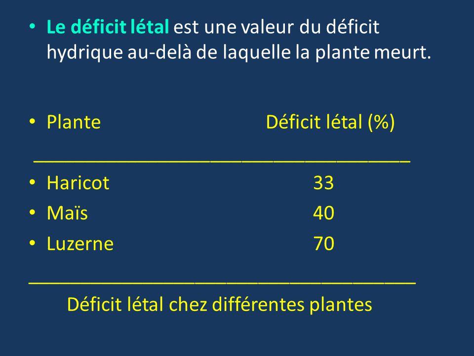 Le déficit létal est une valeur du déficit hydrique au-delà de laquelle la plante meurt.