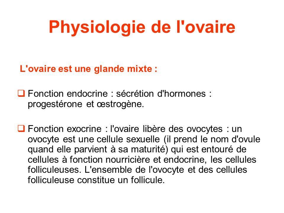 Physiologie de l ovaire