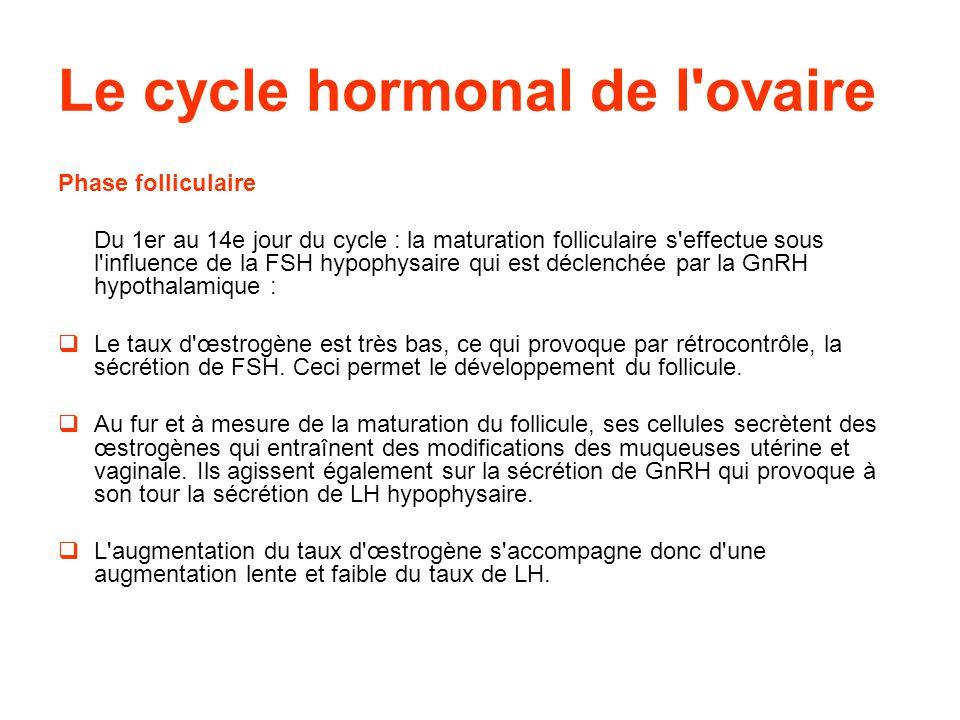Le cycle hormonal de l ovaire