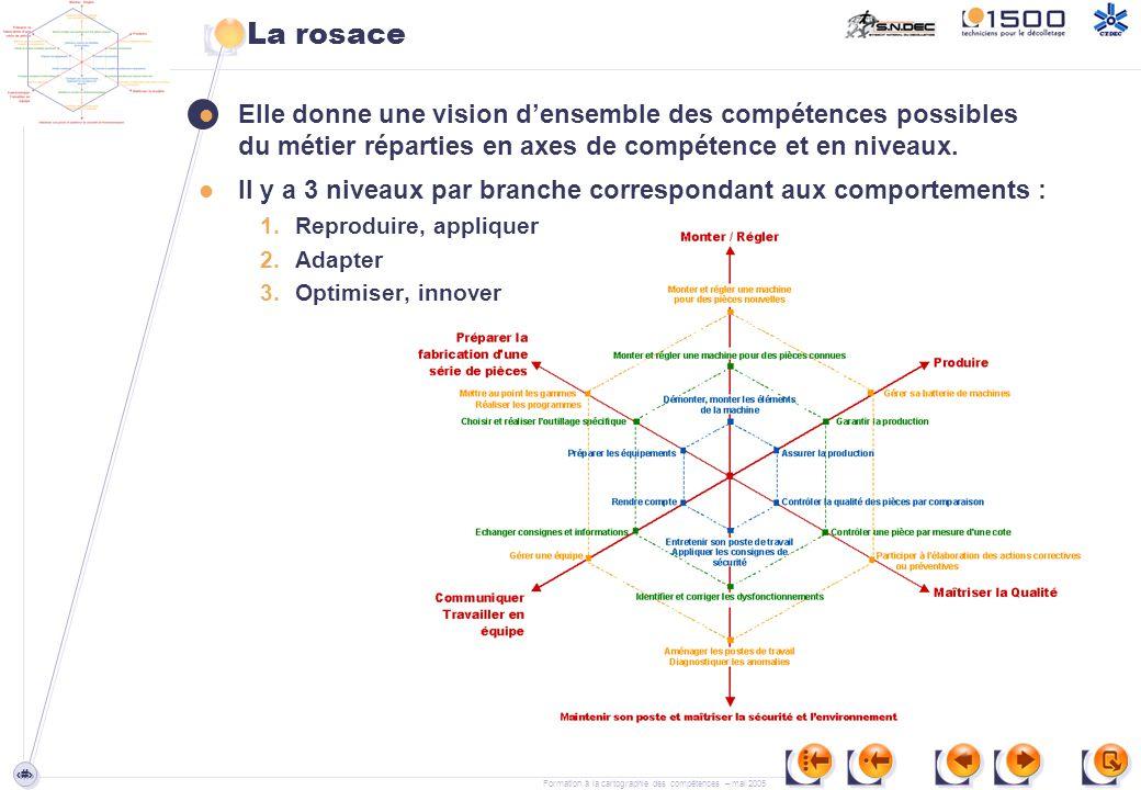 La rosace Elle donne une vision d'ensemble des compétences possibles du métier réparties en axes de compétence et en niveaux.