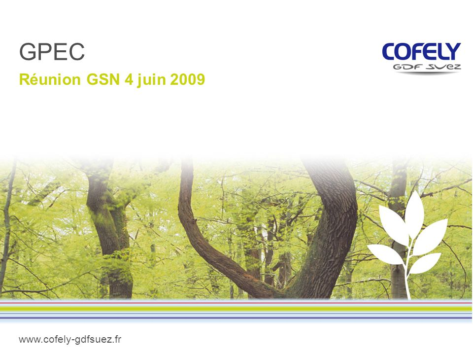 GPEC Réunion GSN 4 juin 2009