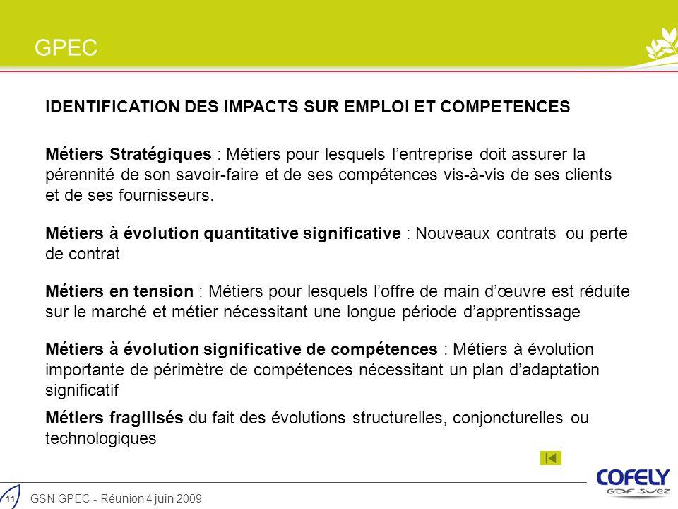 IDENTIFICATION DES IMPACTS SUR EMPLOI ET COMPETENCES