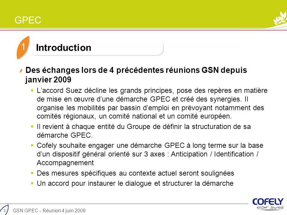 1 Introduction. Des échanges lors de 4 précédentes réunions GSN depuis janvier 2009.